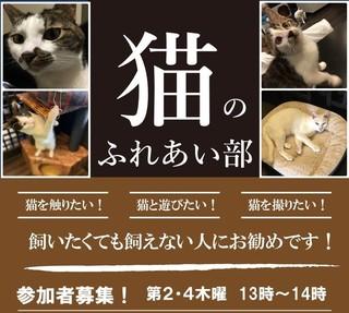 猫ふれあい部 チラシ画像 - コピー.jpg