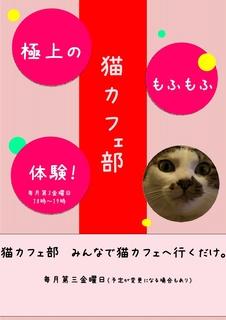 猫カフェ部-001.jpg