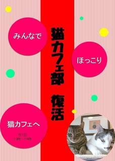 猫カフェ部チラシブログ画像.jpg