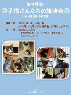 譲渡会フライヤー.jpg